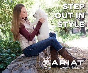 Ariat B (Leicestershire Horse)