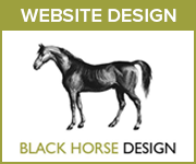 Black Horse Design Website Design (Leicestershire Horse)