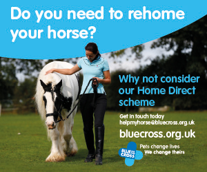 Blue Cross 2020 A (Leicestershire Horse)