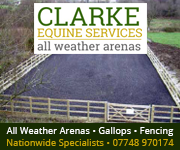 Clarke Equine Services  2018 (Leicestershire Horse)