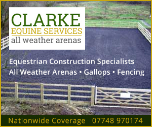 Clarke Equine Services  2020 (Leicestershire Horse)