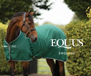 Equus (Leicestershire Horse)