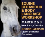 Justine Harrison Workshop March 2019 (Leicetershire Horse)